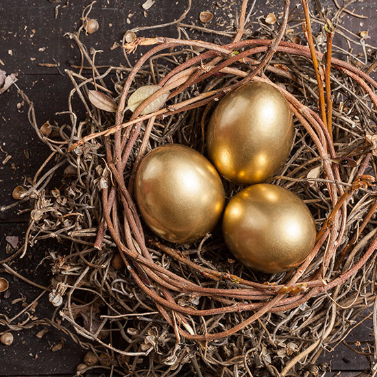 3 golden eggs in a nest of twigs